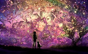 Picture cat, the sky, girl, night, abstraction