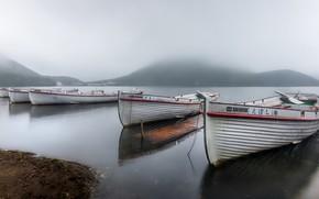 Picture fog, shore, boats