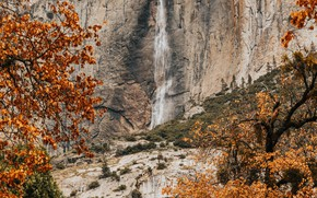 Picture autumn, trees, nature, rock, vegetation, waterfall
