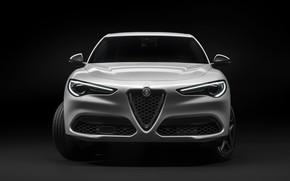 Picture Alfa Romeo, front view, crossover, Stelvio, 2019, Stelvio You