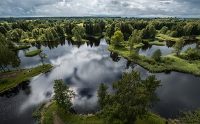 Picture forest, trees, panorama, lake, Lithuania, Lithuania, Kirkilasa lake, Birzai, Birzai, Kirkilai