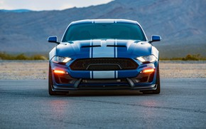 Picture Shelby, front view, 2018, Wide Body, Super Snake