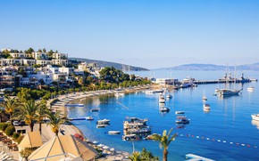 Picture palm trees, home, beach, sea, Bodrum, yachts, Turkey