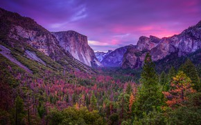 Picture forest, the sky, landscape, mountains, nature, rocks, tops, CA, USA, America, Yosemite, national Park, Yosemite …