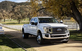 Picture machine, trees, Ford, pickup, Super Duty, F-450, Limited