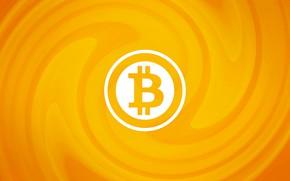 Picture logo, wall, logo, orange, fon, bitcoin, bitcoin, btc