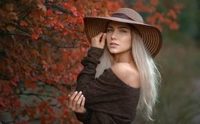 Picture look, Girl, hat, shoulders, Albert Forest, Daria, Gordeuk