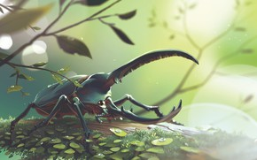 Picture Nature, Drops, Figure, Beetle, Art, Beetle, Illustration, Concept Art, Environments, Lorenzo Lanfranconi, by Lorenzo Lanfranconi, …
