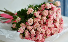 Picture flowers, paper, background, roses, bouquet, light, lies, pink, bow, a lot, roses, bouquet of roses