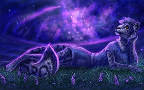 Picture grass, look, face, girl, space, stars, night, pose, figure, graphics, art, leopard, tail, lies, wild …