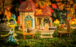 Wallpaper autumn, grass, leaves, macro, light, trees, comfort, house, table, foliage, the game, bottle, food, cute, ...