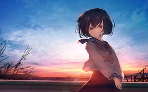 Picture girl, sunset, form