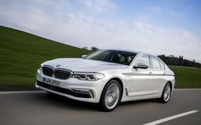 Picture field, white, the sky, movement, BMW, sedan, hybrid, 5, four-door, 2017, 5-series, G30, 530e iPerformance