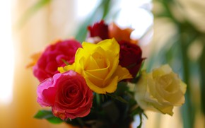 Picture flowers, roses, bouquet, yellow, red, colorful, bokeh, blurred background