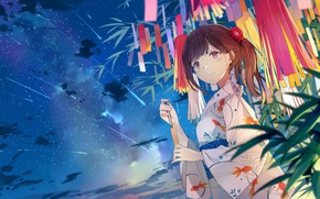 Picture Girl, Night, Art, Starry sky