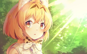 Picture girl, Kemono Friends, Long-eared friends