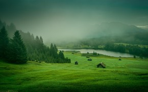 Picture grass, forest, Nature, river, trees, landscape, mountains, houses, meadow, mist