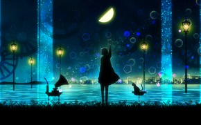 Picture cat, water, girl, night, silhouette