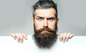 Picture blue eyes, look, head, beard