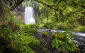 Picture forest, river, vegetation, waterfall, Oregon, Oregon, Columbia River Gorge, The Columbia river gorge, Upper Bridal …