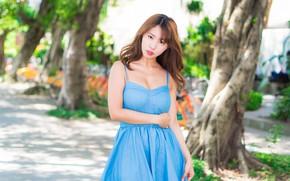 Picture look, girl, hair, dress, Asian, bokeh