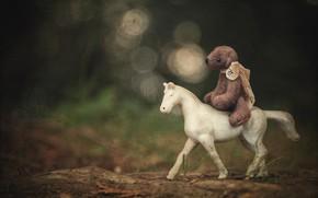 Picture white, nature, childhood, background, horse, horse, toy, dark, bear, bear, rider, rider, bear, plush, items, …