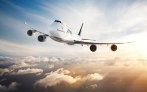 Wallpaper The plane, Liner, Boeing 747, Wings, 747, Engines, Clouds, Deutsche Lufthansa AG, Boeing 747-400, Boeing, ...