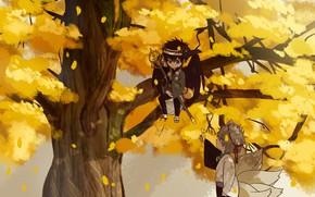 Picture autumn, tree, anime, art, boys, GinTama