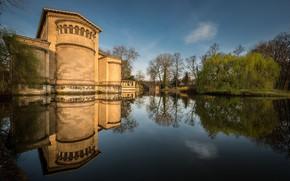 Picture trees, pond, castle, Germany, Potsdam