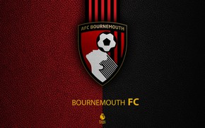 Picture wallpaper, sport, logo, football, English Premier League, Bournemouth