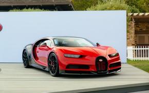 Picture red, bugatti, black, chiron