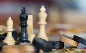 Picture macro, chess, figure, checkers