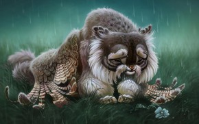 Picture flower, rain, Griffin, crying, by Pixxus