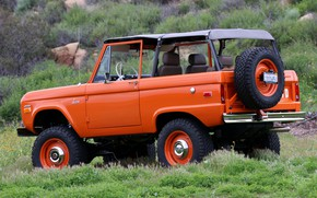 Picture Ford, 1966, Bronco, 2019, convertible top, ICON Old School BR
