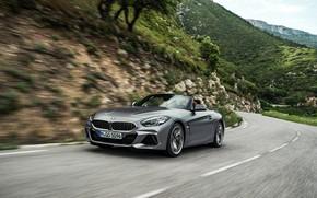 Picture grey, movement, BMW, Roadster, mountain road, BMW Z4, M40i, Z4, 2019, G29