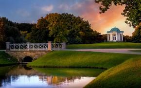 Picture landscape, sunset, nature, pond, Park, Germany, the bridge, gazebo