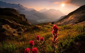 Picture the sun, rays, landscape, mountains, nature, lake, stones, vegetation, Canada, glaciers, British, snow