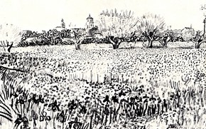 Picture flowers, black and white, Vincent van Gogh, Field with Flowers