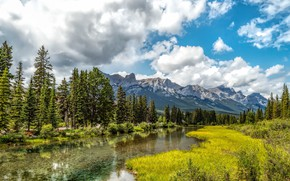 Picture greens, forest, the sky, grass, the sun, clouds, trees, mountains, river, valley, Canada, Alberta, Canmore