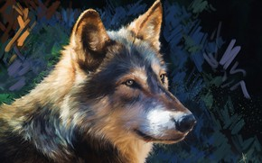 Picture look, face, grey, background, wolf, portrait, painting, strokes