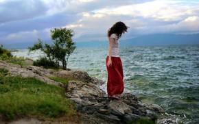 Picture sea, wave, girl, stones, the wind, shore
