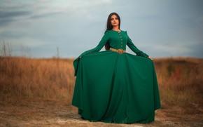 Picture girl, pose, style, green dress, Dmitry Shulgin
