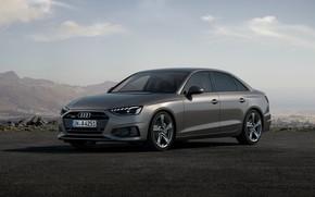 Picture Audi, sedan, Audi A4, four-door, 2019