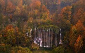 Picture autumn, forest, trees, waterfall, cascade, Croatia, Croatia, Plitvice Lakes National Park, National Park Plitvice lakes, …