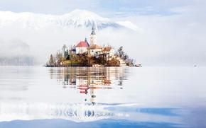 Picture fog, morning, Slovenia, lake bled