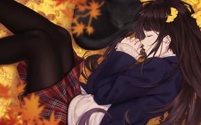 Picture autumn, cat, girl, foliage, sleep