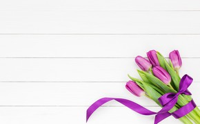 Picture bouquet, tape, tulips, pink, white, with, tulips, bow, bouquet, ribbon