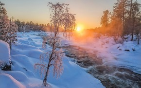 Picture winter, forest, sunset, river