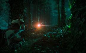 Picture The sky, Girl, Mountains, Robot, Trees, Bow, Horizon, Hunter, Sony Computer Entertainment, Guerrilla Games, Horizon: …
