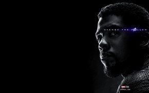 Picture Black Panther, Avengers: Endgame, Avengers Finale, Terpily Thanos, Ashes after clicking, African-African